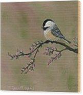 Pink Bud Chickadees - Bird 2 Wood Print