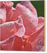 Pink Diamond Dust Wood Print