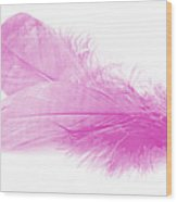 Pink Doubles Wood Print