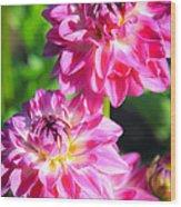 Pink Flower Pair Wood Print