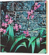 Pink Flowers Gray Wall Wood Print
