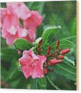 Coastal Flowers Wood Print