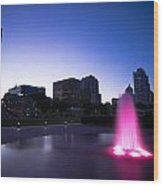 Pink Fountain Wood Print