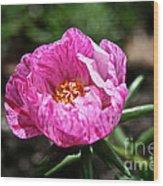 Pink Freckles Wood Print