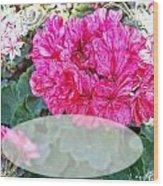 Pink Geranium Greeting Card Blank Wood Print
