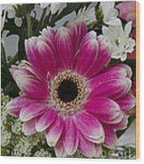 Pink Gerbera Wood Print