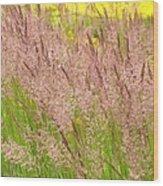 Pink Grass Wood Print