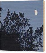 Pink Half Moon Photograph Wood Print