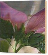 Pink Hibiscus 2 Wood Print
