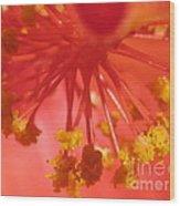 Pink Hibiscus Flower Wood Print