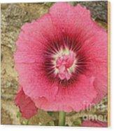 Pink Hollyhock 1 Wood Print