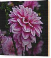 Pink II Wood Print
