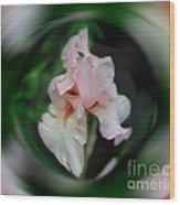 Pink Iris Energies Wood Print