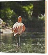 Pink Lonesome Wood Print