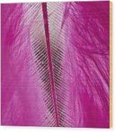 Pink Marabou Macro Wood Print