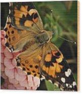 Pink N Orange Wood Print