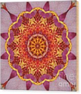 Pink Orchid Mandala-1 Wood Print