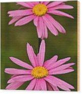 Pink Pair Wood Print