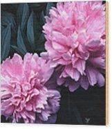 Pink Peony Pair Wood Print