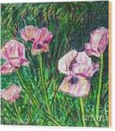 Pink Poppies Wood Print