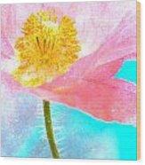 Pink Poppy On Blue Wood Print