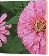 Pink Posy Pano Wood Print