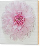 Pink Precious In White Wood Print