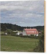 Pink Roof Farm Wood Print