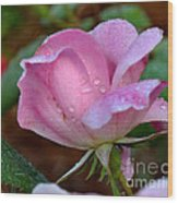 Pink Rose With Water Drops-33 Wood Print