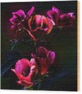 Pink Roses Of The Night Wood Print