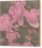 Pink Roses Wood Print