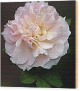 Pink Ruffles Wood Print