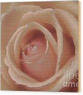 Pink Sensual Rose Wood Print