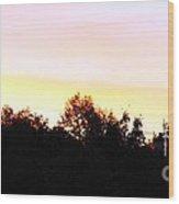 Pink Skies Wood Print by Lorraine Louwerse