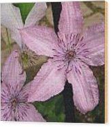 Pink Stars Wood Print
