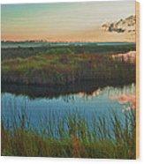 Pink Swamp Sunrise Wood Print