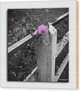 Pink Touch Wood Print