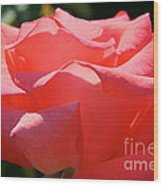 Pink Touch Of Class Petals Wood Print