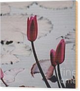 Pink Water Lily Buds Wood Print