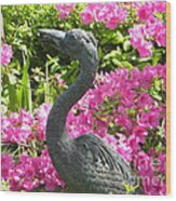 Pinkness Of A Bird Wood Print by Kimberlee Weisker