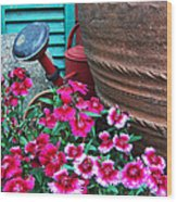 Pinks The Garden Beauty - Dianthus Wood Print
