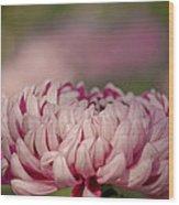 Pinky Swear Wood Print