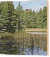 Pintail Pond Wood Print