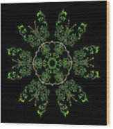 Pinwheel II Wood Print