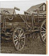 Pioneer Freight Wagon - Nevada City Ghost Town Wood Print by Daniel Hagerman