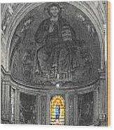 Pisa Cathedral Wood Print