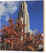 Pittsburgh Autumn Leaves At The Cathedral Of Learning Wood Print by Will Babin
