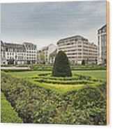 Place Des Martyrs, Luxembourg City, Luxembourg, Europe Wood Print by Jon Boyes