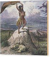 Plains Native American: Signal, 1873 Wood Print