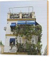 Plant Covered House In Triana Seville Wood Print